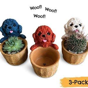 Set of 3 Cute Puppy Dog Succulent Planters